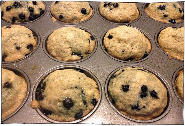 blueberry-lime-muffins