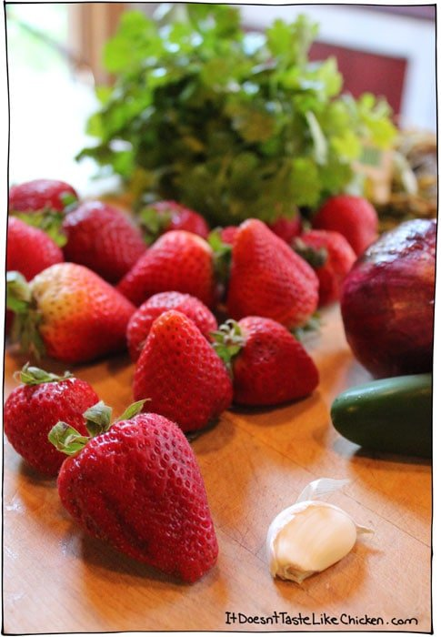 strawberry-salsa-ingredients