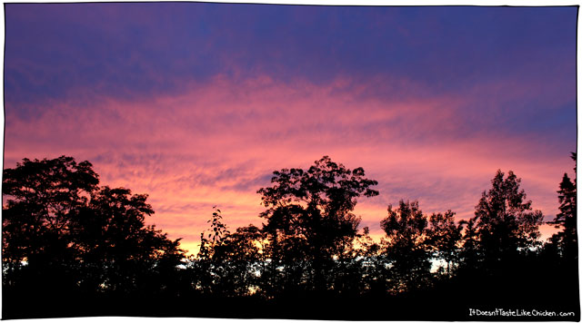 sunset-in-halifax