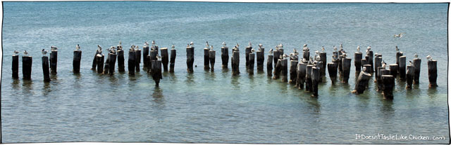 birls-on-poles-in-the-ocean