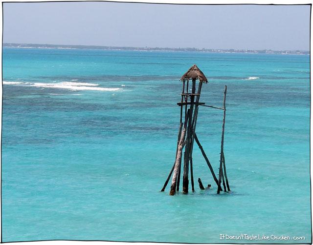 waterworld-isla-mujueres