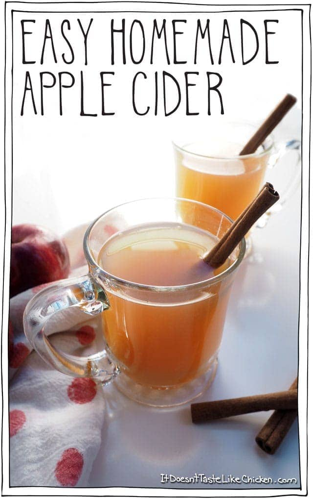 Easy Homemade Apple Cider & the First Snowfall of The Year!