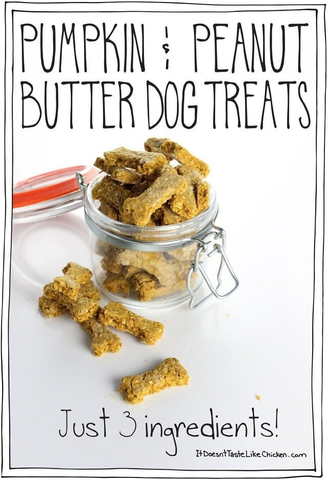 Pumpkin peanut butter dog treats just 3 ingredients it doesn pumpkin peanut butter dog treats just 3 ingredients it doesnt taste like chicken forumfinder Image collections