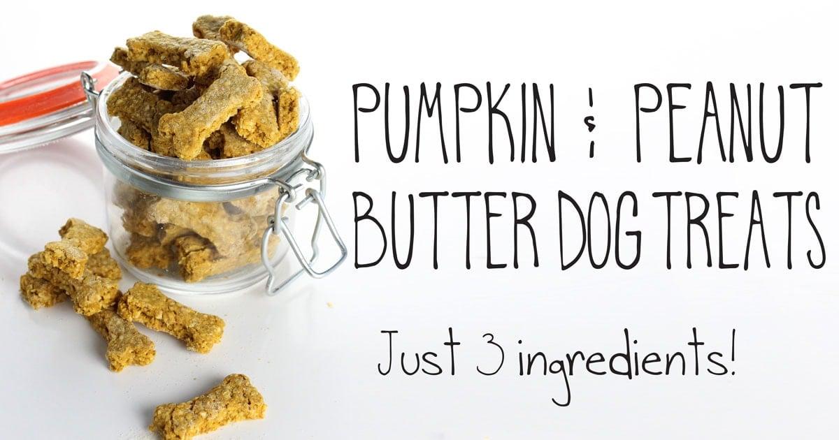 Pumpkin   Ingredients Dog Treat Recipe