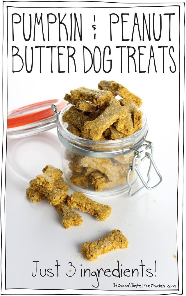 3 Ingredient Pumpkin & Peanut Butter Dog Treats! So easy to make. Perfect gift