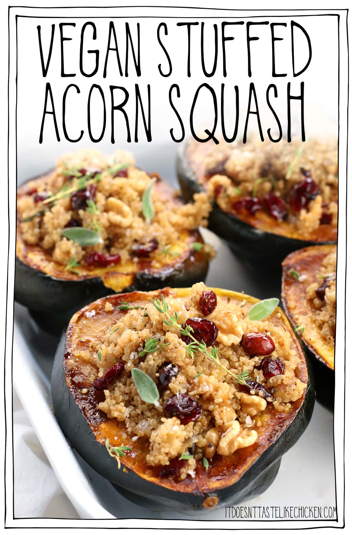 Vegan Stuffed Acorn Squash! Easy to make and can be made ahead of time. The perfect main dish for Thanksgiving or Christmas. The squash is stuffed with quinoa, seasonal spices, nuts or seeds, and pops of sweet dried cranberry. Delish! #itdoesnttastelikechicken #veganrecipes #veganthanksgiving