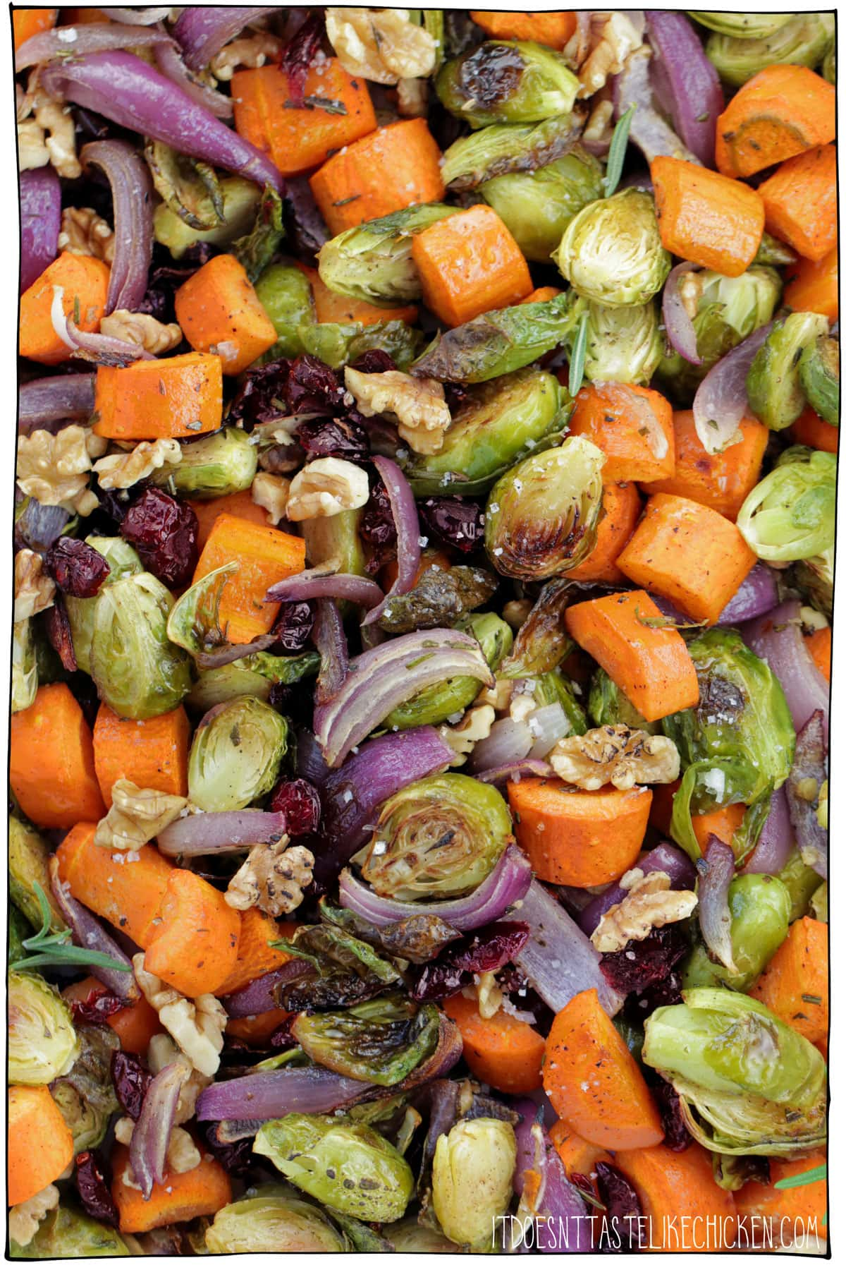 The Best Roasted Vegetables for Thanksgiving! Easy to make with crispy Brussels sprouts, hearty carrots, sweet red onion, crunchy toasted walnuts, sweet cranberries, and just a tiny touch of cinnamon. Now I know that I advertised these vegetables as being the perfect Thanksgiving side (and they really are), but these veg are so scrumptious you might find yourself prepping them all winter long. #itdoesnttastelikechicken #veganrecipes #thanksgiving